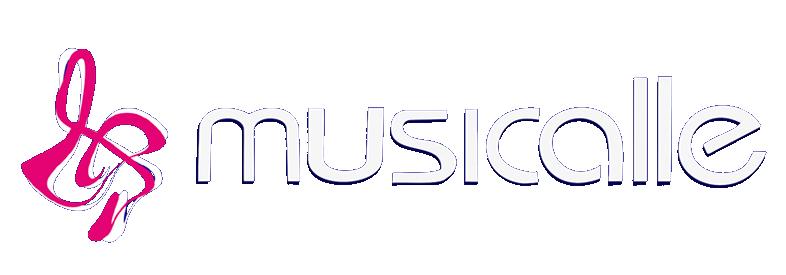 Musicalle Instrumentos - Loja de instrumentos musicais