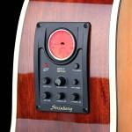 VIOLAO STRINBERG FOLK SD20C NS FOSCO - 9485